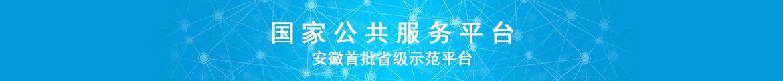 安徽云丰网络科技有限责任公司-campaign